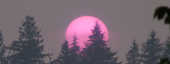 Northwestern U.S. Forest Fire Smoke Sunset, 8/24/15 (Pullman WA). Photo by Linda Russo